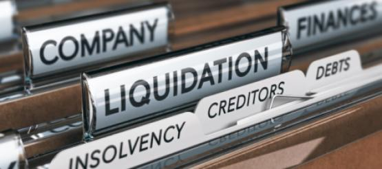 insolvent company files