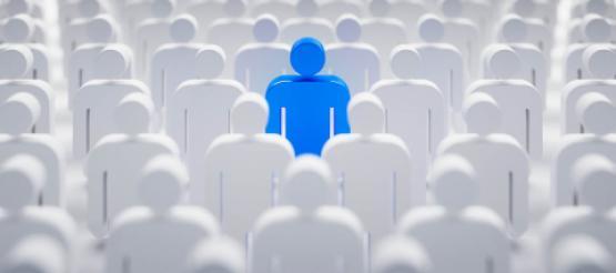 Audit Responsibility Directors Auditors