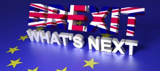 What's next Brexit flag