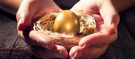 Hands protecting gold next egg