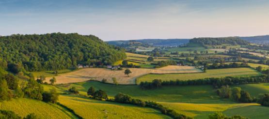 UK Farmland Landscape