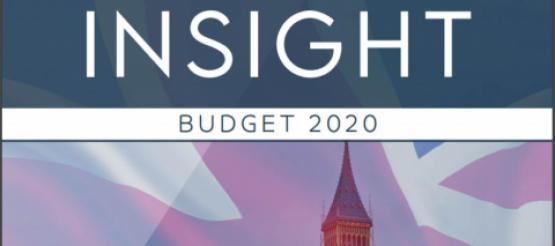 INSIGHT Budget summary