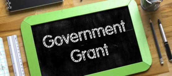 Government Grant on Ipad