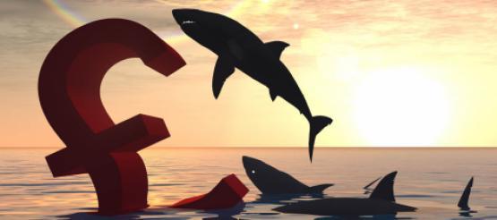 Shark circling £ sign in sea