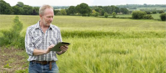 Farmer Making Tax Digital