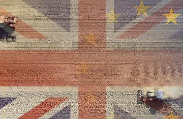 UK combine harvesters ploughing Brexit flag