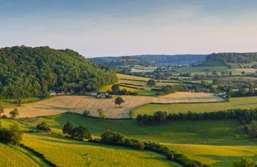UK Farmland Landscape